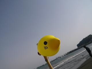 oceanpic19.JPG